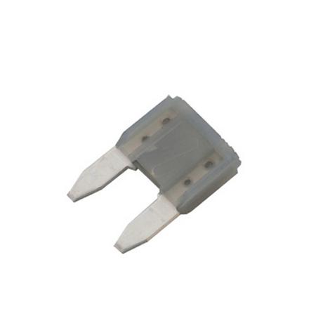 2 Amp Mini Fuse